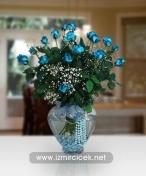 Sade Kalp Cam Içinde 21 Mavi Güller