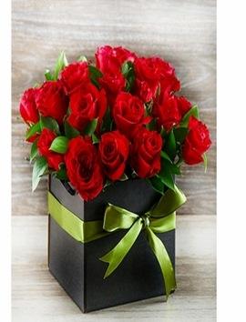 Sevgiliye Kutuda 21 Kırmızı Gül