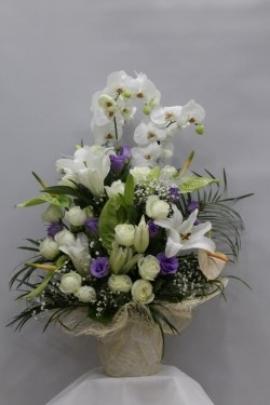 2.li Orkide Aranjmanı