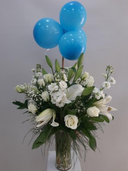 Erkek Bebek Çiçeği