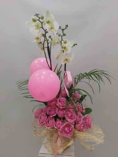 Kız Bebek Orkide Gül Tasarım