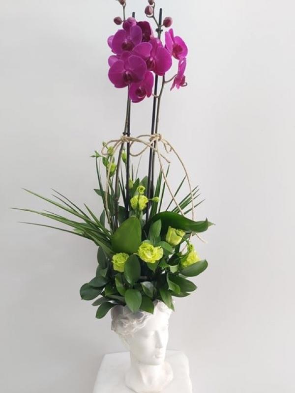 Orkide Lisyantus Aranjmanı