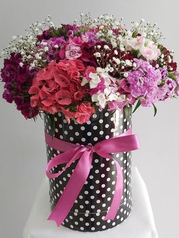 Puantiyeli Kutuda Kır Çiçekleri