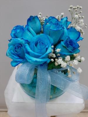 Fanusda 7 mavi gül